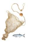 net w fish