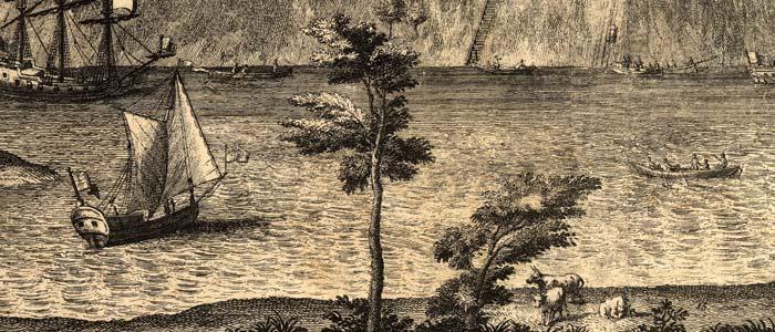 savannah woodcut